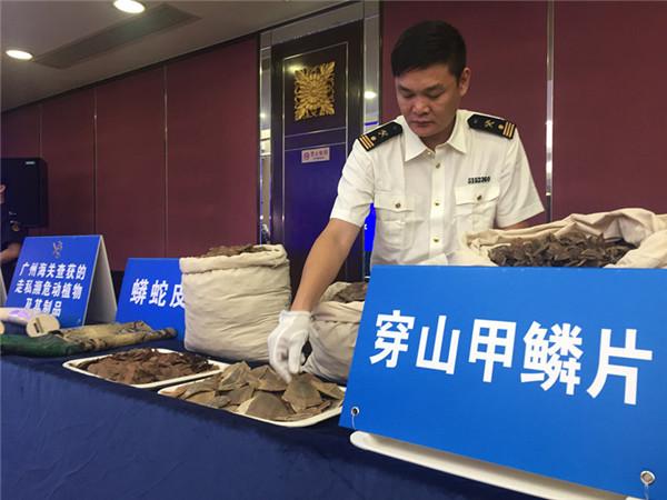 广州海关起底7吨穿山甲鳞片走私内幕